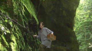ホタルノヒカリ2綾瀬はるか森へ.jpg