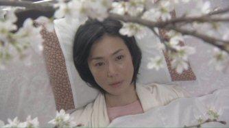 冬のサクラ今井美樹桜.jpg
