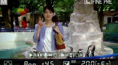 素直になれなくて上野樹里動物園でポーズ.jpg