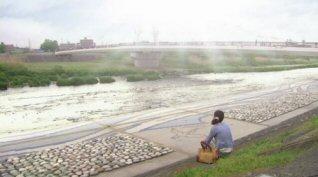 素直になれなくて上野樹里川に向かって.jpg
